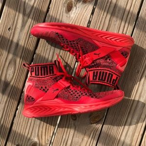 Limited Edition PUMA Ignite EvoKnit Sneaker Red